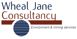 Links - Wheal Jane Consultancy Website