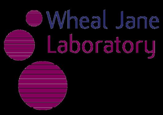 Links - Wheal Jane Laboratory Website